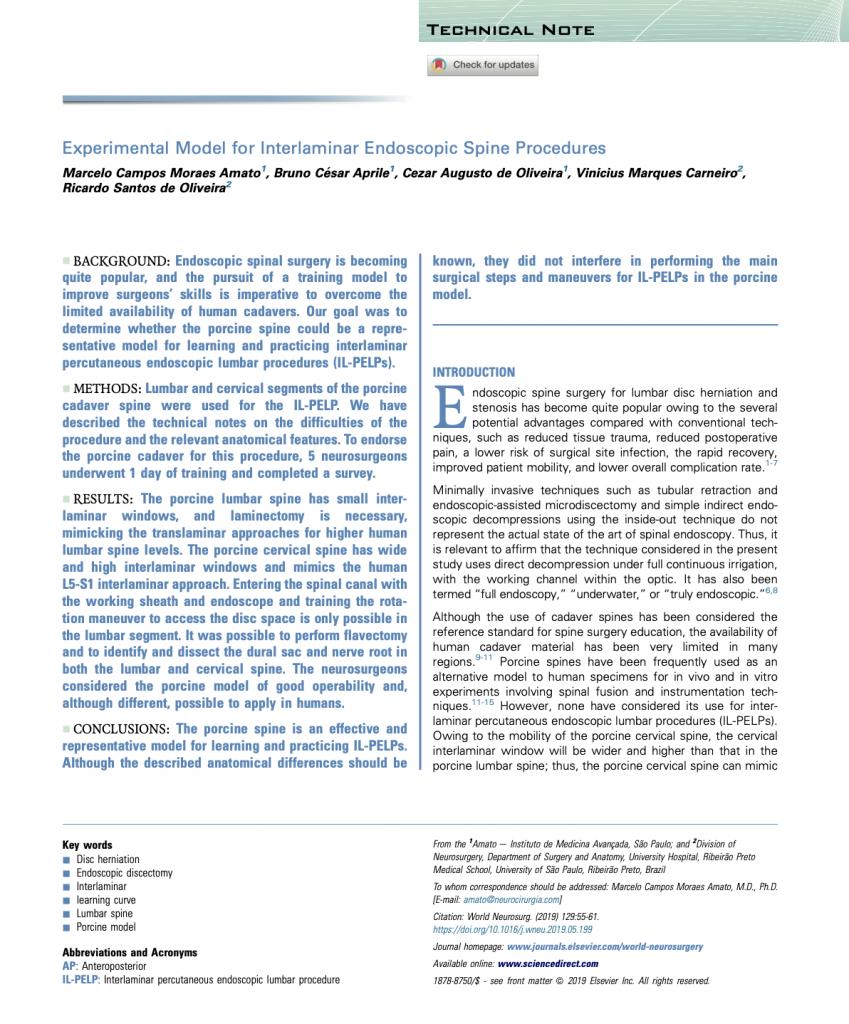 Publicação Científica - Endoscopia de Coluna